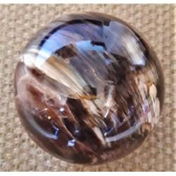 Sphère Bois Fossilisé 2KG